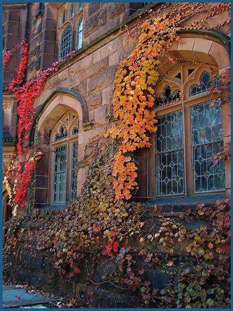 Princeton, New Jersey